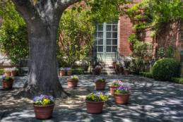 20060505filoli_mg_3118_new
